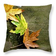 Trio Of Leaves Throw Pillow