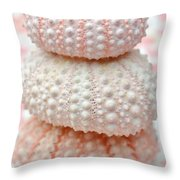 Trio Of Pink Sea Urchins Throw Pillow