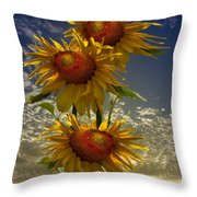 Trio Of Sunflowers Throw Pillow