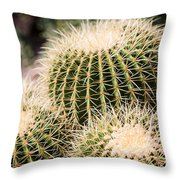 Triple Cactus Throw Pillow
