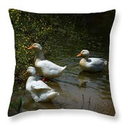 Triple Ducks Throw Pillow