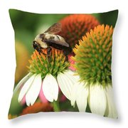 Triple Duty Throw Pillow