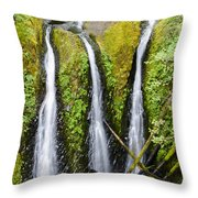 Triple Falls Throw Pillow