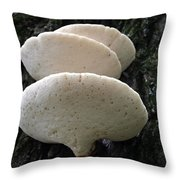 Triple Stack Of Bracket Fungus Throw Pillow