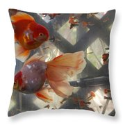 Triple Tail Goldfish Throw Pillow