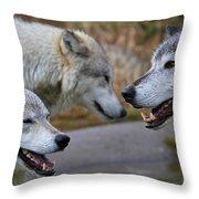 Triple Take Throw Pillow