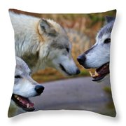 Triple Take Painted Throw Pillow
