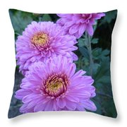 Triplets Of Purple Mums Throw Pillow