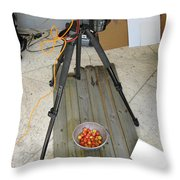 Tripod And Cherries On Floor Throw Pillow