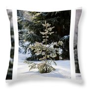 Triptych - Christmas Trees In The Forest - Featured 3 Throw Pillow