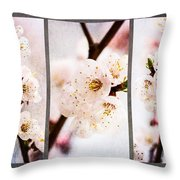 Triptych Light Of Spring 1 Throw Pillow