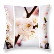Triptych Light Of Spring 2 Throw Pillow