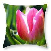 Triumph Tulip Throw Pillow