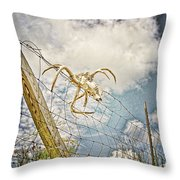 Trophy Display Throw Pillow
