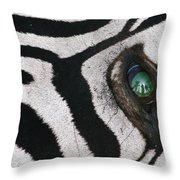 Trophy Hunter In Eye Of Dead Zebra Throw Pillow
