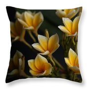Tropic Welcome Throw Pillow