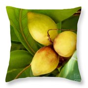 Tropical Almond Throw Pillow