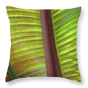 Tropical Banana Leaf Abstract Throw Pillow