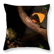 Tropical Butterfly And Rhinoceros Beetle Throw Pillow