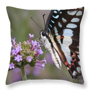Tropical Butterfly Throw Pillow