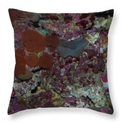 Tropical Coral Throw Pillow