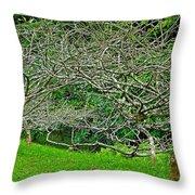 Tropical Entanglement Throw Pillow