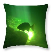 Tropical Fish Shilouette In A Cenote Throw Pillow