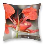 Tropical Flamboyant Flower Throw Pillow
