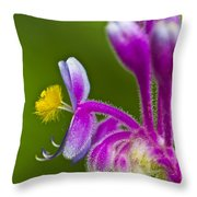 Tropical Flower Detail Throw Pillow