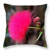 Red Mimosa Flower Throw Pillow
