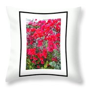Tropical Flowers Of South Florida Throw Pillow