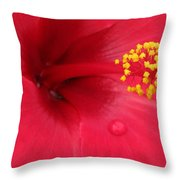 Tropical Hibiscus - Antigua Wind 01 Throw Pillow