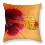Tropical Hibiscus - Aruba Wind 01 Throw Pillow