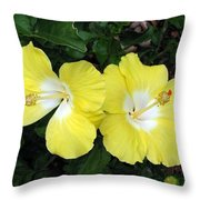 Tropical Hibiscus - Bonaire Wind 01 Throw Pillow