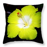 Tropical Hibiscus - Bonaire Wind 04a Throw Pillow