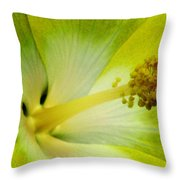 Tropical Hibiscus - Bonaire Wind 06a Throw Pillow