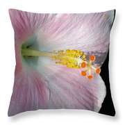 Tropical Hibiscus Throw Pillow by Kaye Menner