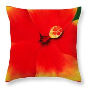 Tropical Hibiscus Painting Throw Pillow