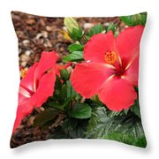 Tropical Hibiscus - Starry Wind 01 Throw Pillow
