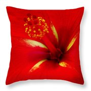 Tropical Hibiscus - Starry Wind 02a Throw Pillow