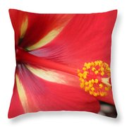 Tropical Hibiscus - Starry Wind 04 Throw Pillow