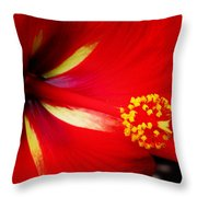 Tropical Hibiscus - Starry Wind 04a Throw Pillow