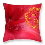 Tropical Hibiscus - Trinidad Wind 02 Throw Pillow