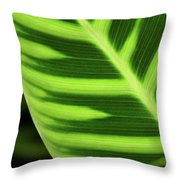 Tropical Leaf Throw Pillow
