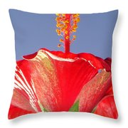 Tropical Red Hibiscus Flower Against Blue Sky  Throw Pillow