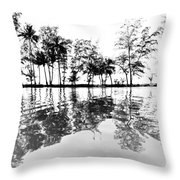 Tropical Reflections Throw Pillow