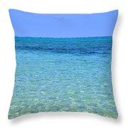 Tropical Seascape Throw Pillow