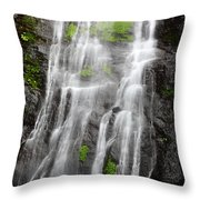 Tropical Torrents Throw Pillow
