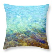 Tropical Treasures Throw Pillow