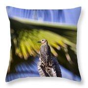 Tropical Woodpecker Throw Pillow